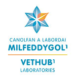 VetHub1 Logo